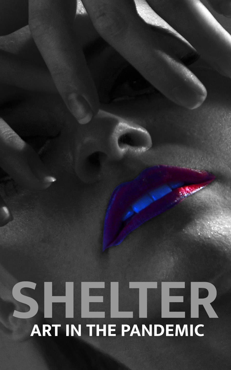 SHELTER - Art in the pandemic